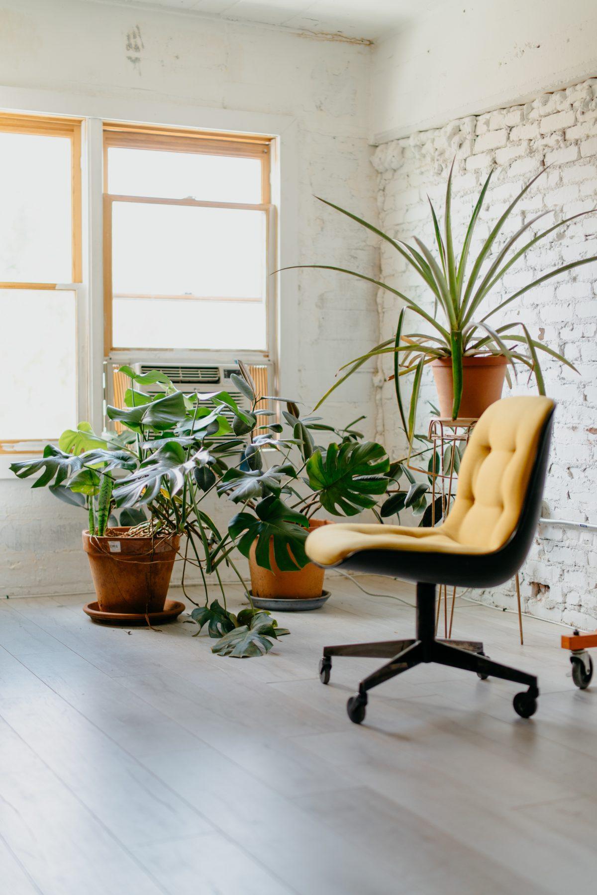 Lepo, kakovostno in ugodno pisarniško pohištvo