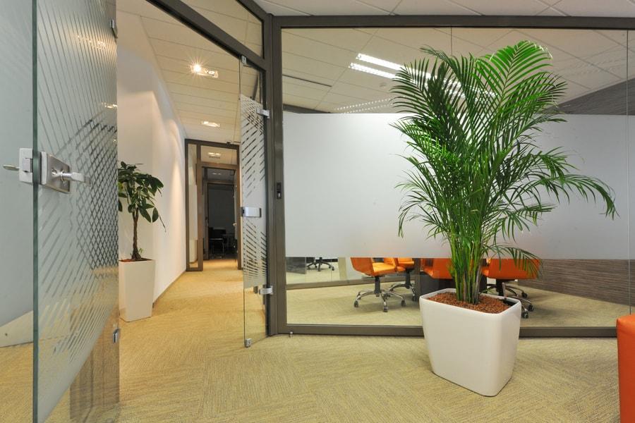 Steklena predelna stena za pisarne
