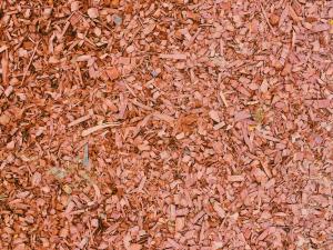 Sekanci so cenovno ugodni, a peleti in drva ponujajo boljše izkoristke.